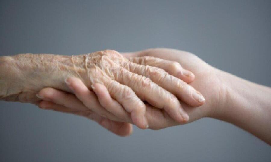 The Services Provided by Hospice Care